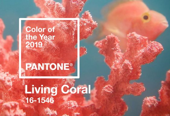 living-coral-1