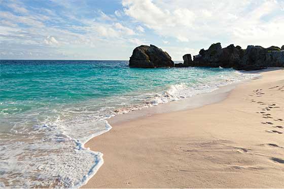 bermuda beach rose - Luna di Miele alle Bermuda con amore