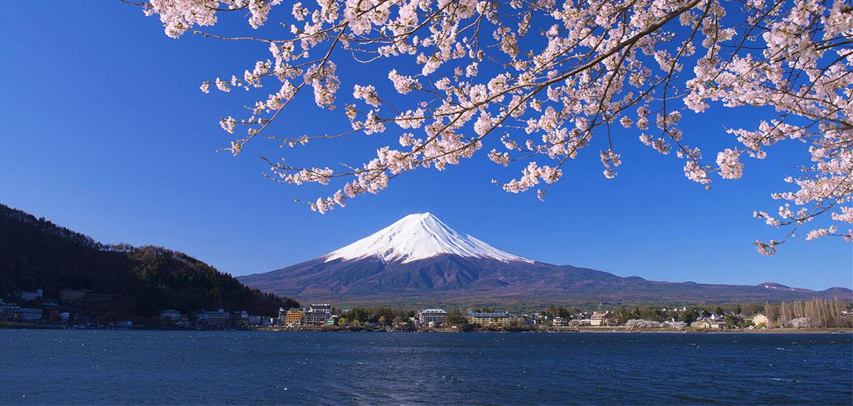 Luna di Miele alla scoperta del Giappone